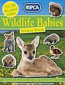 Wildlife Babies Sticker Book
