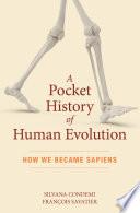 A pocket history of human evolution : how we became sapiens /