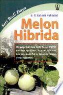 Budi Daya Melon Hibrida