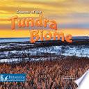 Seasons of the Tundra Biome Book PDF