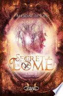 couverture Le Secret de Lomé - livre II L'Odyssée de Lomé