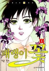 패랭이 꽃 1