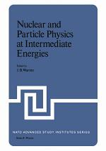 Nuclear and Particle Physics at Intermediate Energies
