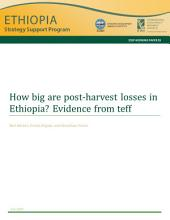 How big are post-harvest losses in Ethiopia?: Evidence from teff