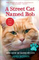 A Street Cat Named Bob PDF