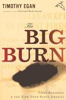 The Big Burn PDF