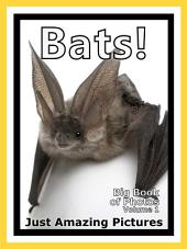 Just Bats! vol. 1: Big Book of Photographs & Bat Pictures