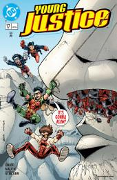 Young Justice (1998-) #17