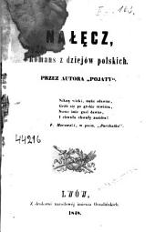 Nałęcz: romans z dziejów polskich
