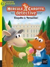 Enquête à Versailles