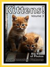 Just Kittens! vol. 3: Big Book of Kitten Cat Baby Cats Photographs & Pictures