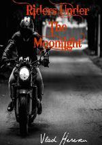 Riders Under the Moonlight