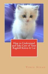 How to Understand and Take Care of Your Ragdoll Kitten & Cat