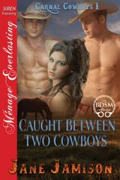 Caught Between Two Cowboys [Carnal Cowboys 1]