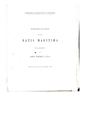 Observations on the Batis Maritima of Linnæus: Volume 6, Issue 3