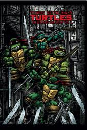 Teenage Mutant Ninja Turtles: The Ultimate B&W Collection, Vol. 5