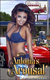"""Antonia's Arousal: Book 2 of """"Bikini Babes' Carwash"""""""