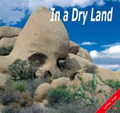 In a Dry Land: Little Kiss07