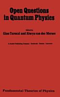 Open Questions in Quantum Physics PDF
