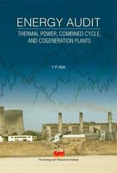 Energy Audit: thermal power, combined cycle, and cogeneration plants