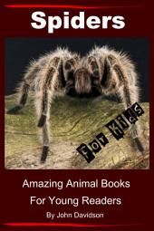 Spiders for Kids - Amazing Animal Books for Young Readers