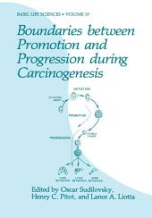 Boundaries between Promotion and Progression during Carcinogenesis