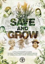 Save and Grow PDF