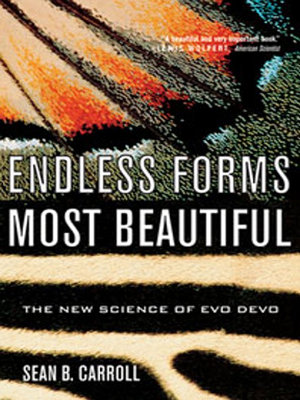 Endless Forms Most Beautiful  The New Science of Evo Devo PDF
