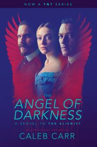 The Angel of Darkness Book