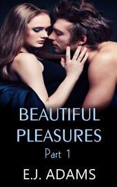 Beautiful Pleasures Book 1: A Billionaire Romance
