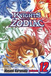 Knights of the Zodiac (Saint Seiya), Vol. 12: Death Match in the Master's Chamber!