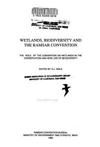 Wetlands  Biodiversity and the Ramsar Convention
