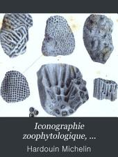 Iconographie zoophytologique, description par localitʹes et terrains des polypiers fossiles de France et pays environnants: accompagnʹee de figures lithographiʹees, Volume2