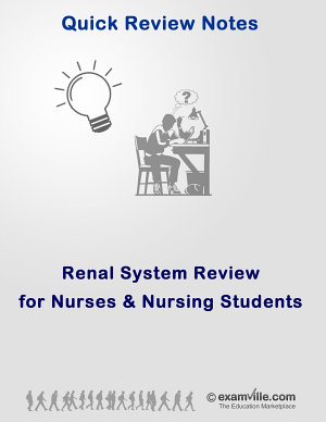 Quick Physiology Review  Renal System for Nursing Students PDF