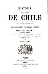 Historia fisica y politica de Chile segun documentos adquiridos en esta republica durante doce años de residencia en ella y publicada bajo los auspicios del supremo gobierno: Volumen 25