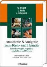 An  sthesie und Analgesie beim Klein  und Heimtier sowie bei V  geln  Reptilien  Amphibien und Fischen PDF