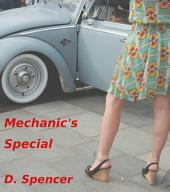 Mechanic's Special