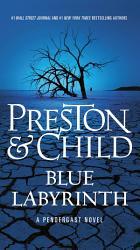 Blue Labyrinth Book PDF