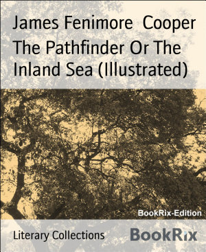 The Pathfinder Or The Inland Sea  Illustrated