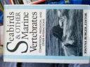 Seabirds & Other Marine Vertebrates