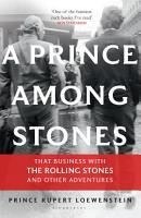 A Prince Among Stones PDF