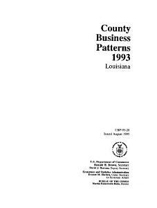 County Business Patterns  Louisiana