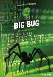 Big bug: Les enquêtes de Logicielle