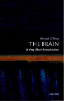 The Brain  A Very Short Introduction PDF