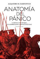 Anatomía del pánico: La batalla de Huaqui, o la derrota de la Revolución (1811)