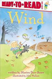 Wind: with audio recording