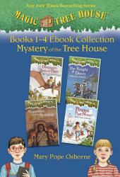 Mystery Of The Tree House Book PDF