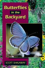 Butterflies in the Backyard