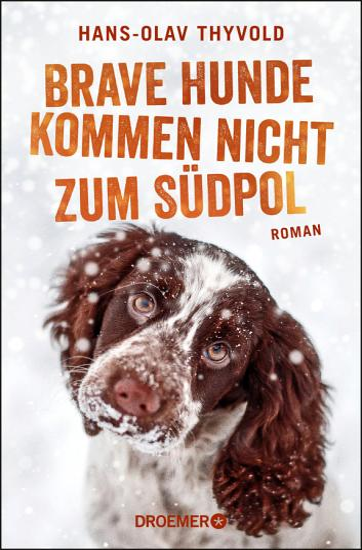 Brave Hunde kommen nicht zum S  dpol PDF