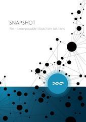 Snapshot: Nxt, unsurpassable blockchain solutions